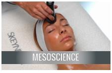 mesoscience
